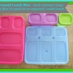 How to Keep Your Child's Lunch Organized