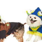 Win a Halloween Costume for your Pet from PetSmart 2 Winners!