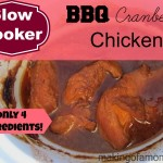 BBQ Cranberry Chicken – Slow Cooker Meal
