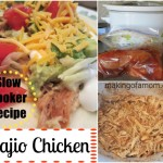 Bajio Chicken – Slow Cooker Meal