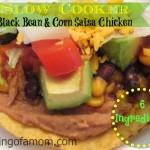 Black Bean & Corn Salsa Chicken – Slow Cooker Meal