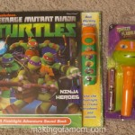 Teenage Mutant Ninja Turtle Toy Options