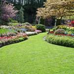 Child Proofing Your Garden
