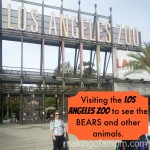 Visiting the BEARS at the Los Angeles Zoo