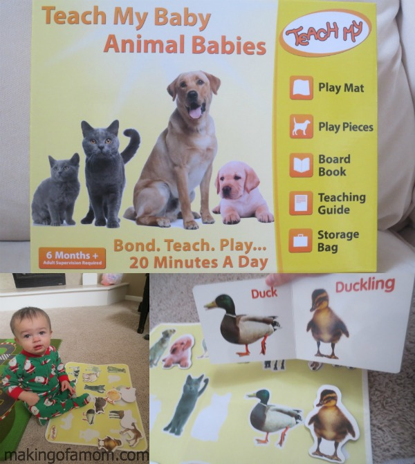 Teach-My-Baby-Animals
