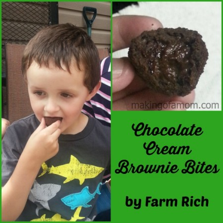 Brownie-Bites-FarmRich