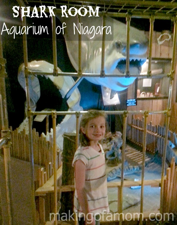 Shark-Room-Aquarium-Niagara
