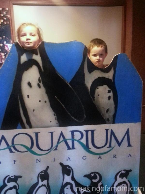 kid-penguins-aquarium-niagara