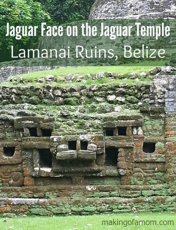 Jaguar-Face-Lamanai-Ruins