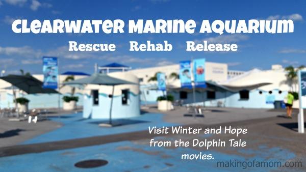 Clearwater-Marine-Aquarium-Title