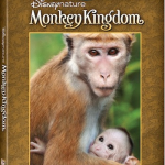 Disneynature Monkey Kingdom on Blu-ray Sept. 15