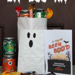 DIY BOO Kit