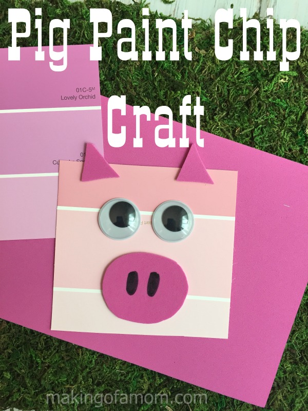 Pig-Paint-Chip-Craft