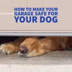 How to Make Your Garage Safe for Your Dog
