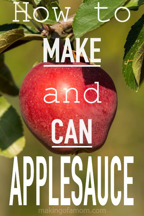 Make-Can-Applesauce