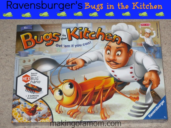 Bugs_in_the_Kitchen