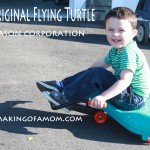 Flying Turtle By Mason Corporation