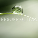 Resurrection – ABC's newest Mystery Series