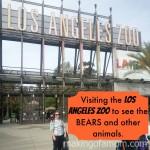 Visiting the BEARS at the Los Angeles Zoo