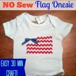 No Sew Flag Onesie