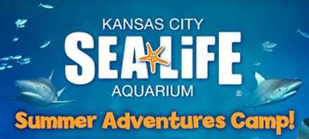 sealife adventure camps