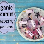 Organic Coconut Blueberry Popsicles