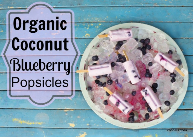 Coconut-Blueberry-Popsicles