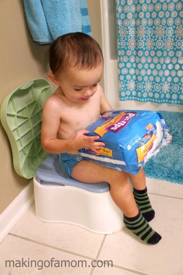 Potty-Training-Seat