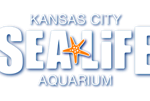 Top 5 Things to See at Sea Life KC (According to my Kids)