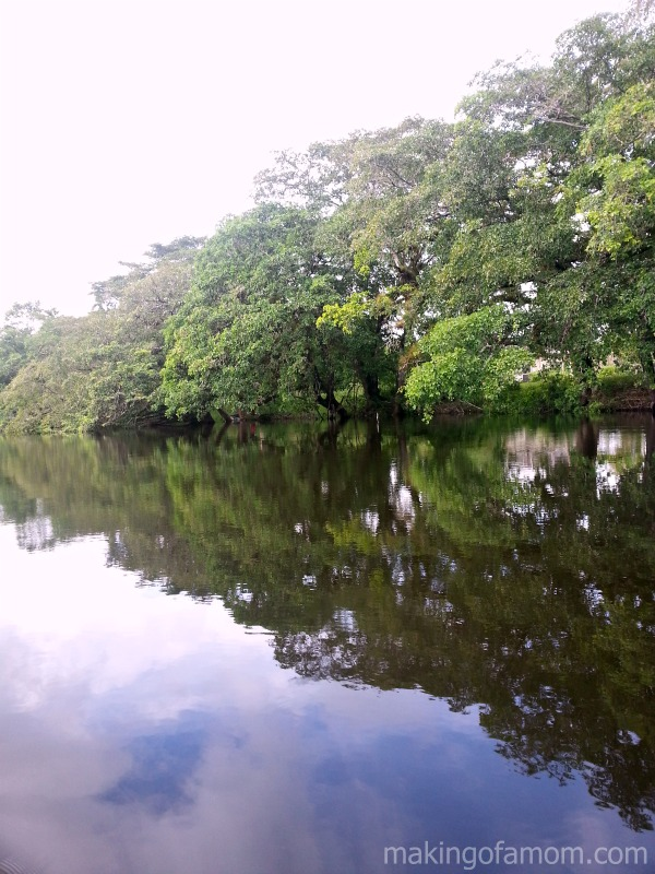 New-River-Belize
