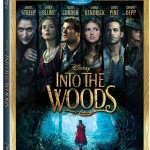 Into The Woods is Now on Store Shelves