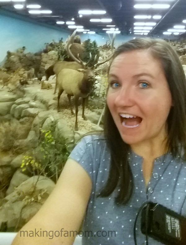 Deer-Selfie