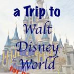 How to Plan a Trip to Walt Disney World