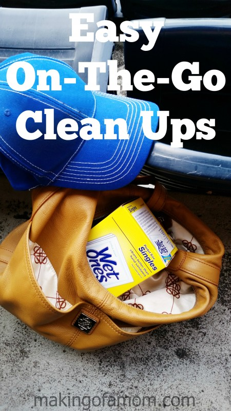 easy-on-the-go-cleanups-hero